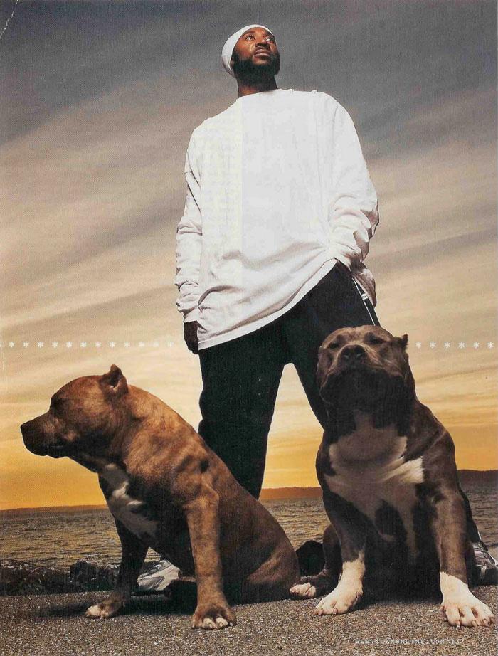 Muglestons Pitbull Farm - pitbulls for sale - pit bulls for